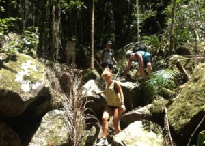 Adventure tours in Byron Bay